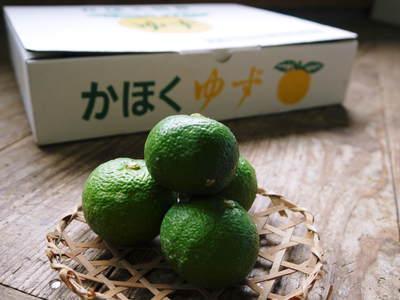 香り高き柚子(ゆず) 柚子こしょう用の香り高き『青柚子』 9月25日(金)より出荷します!!_a0254656_176543.jpg