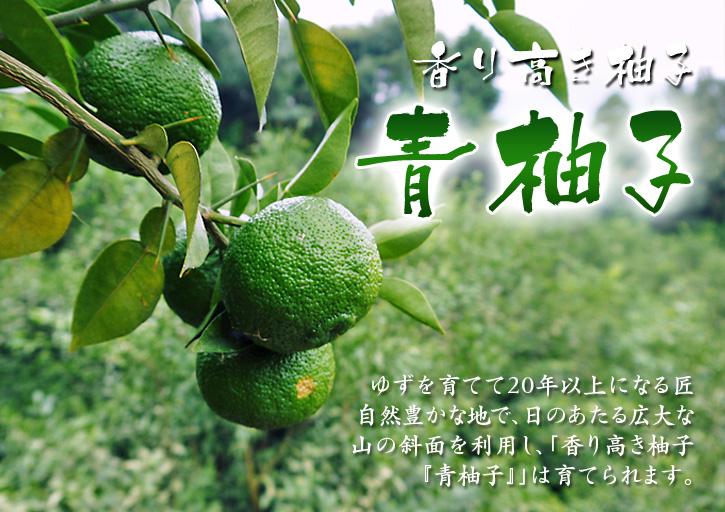 香り高き柚子(ゆず) 柚子こしょう用の香り高き『青柚子』 9月25日(金)より出荷します!!_a0254656_1951955.jpg