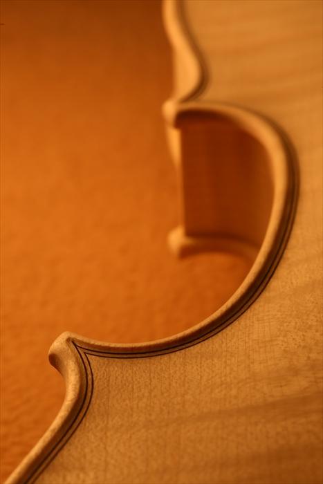 ホワイトヴァイオリン、秋に向けて。_d0047461_574040.jpg