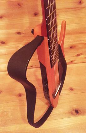 ギターアホのギター自慢!!_c0123295_1415841.jpg