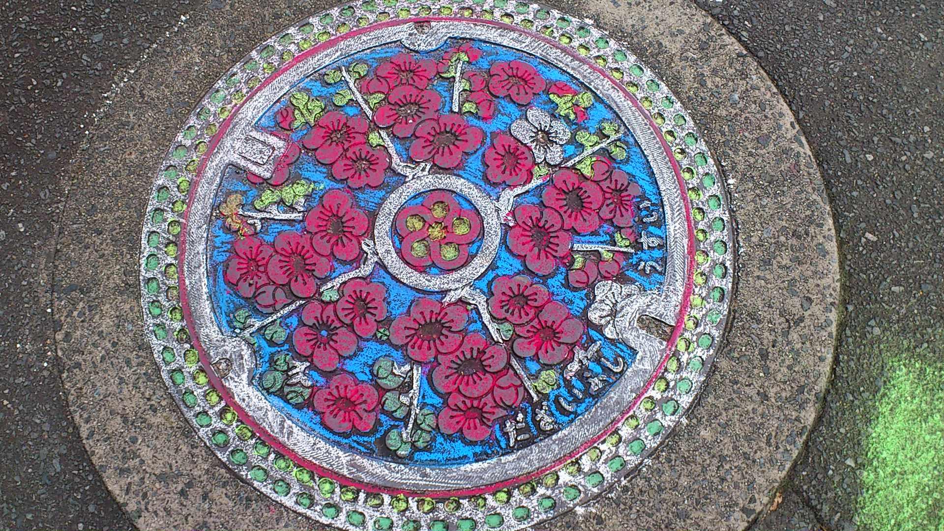 マンホールの花と神社の花_f0048597_642889.jpg