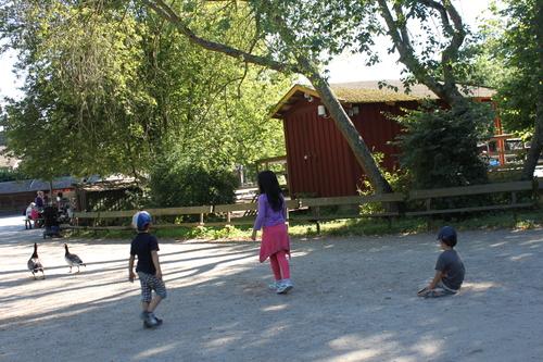 ヘルシンキへの旅―番外編、行けなかったストックホルム市街とスカンセン_e0123104_6551439.jpg
