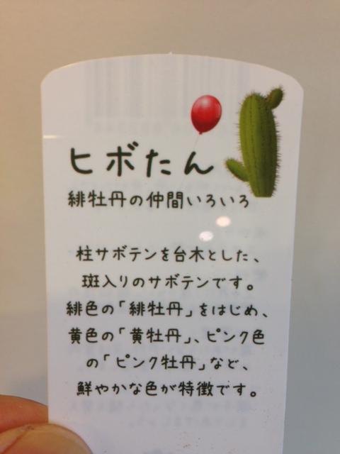 ヒボたん_e0069308_1219169.jpg