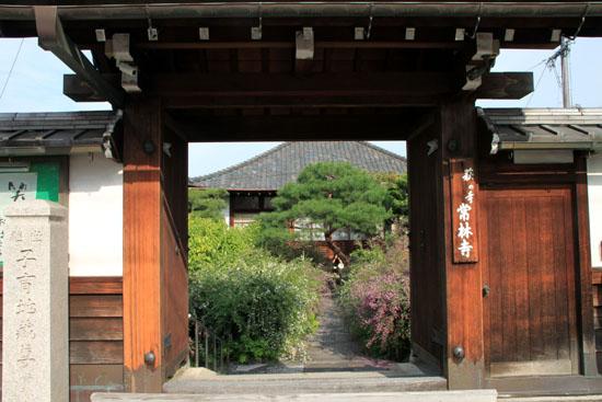 常林寺 萩が満開_e0048413_12474772.jpg