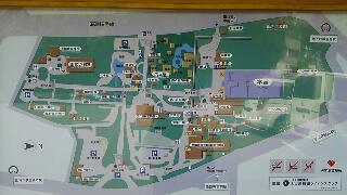 木々の精気に包まれている熱田神宮_f0008555_19113852.jpg