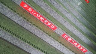 木々の精気に包まれている熱田神宮_f0008555_19451492.jpg