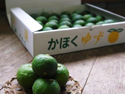 香り高き柚子(ゆず) 柚子の匠!生産農家さんが作る手作り「柚子こしょう」のレシピ!!_a0254656_1791796.jpg