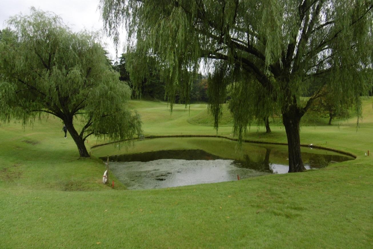 雨のち曇り空のゴルフ_f0205367_22361713.jpg