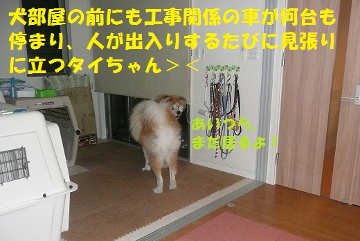 f0121712_10192291.jpg