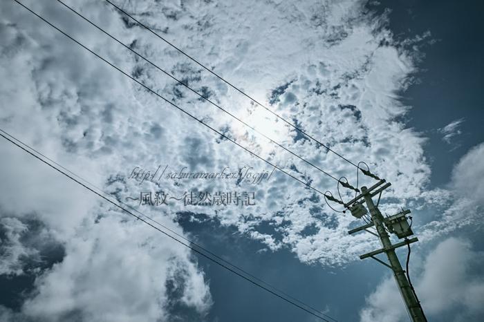 雷雨のあと・・・。_f0235723_21342240.jpg