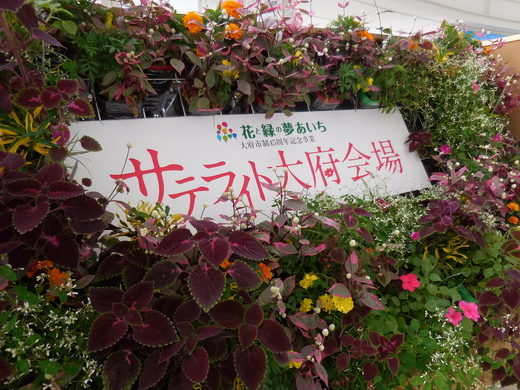 花と緑でおおぶを元気に!_f0139333_215655.jpg