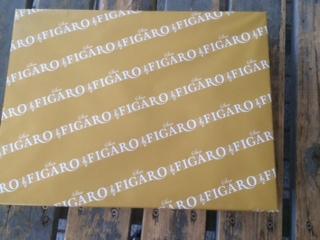 b0194462_2012151.jpg