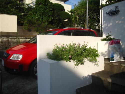 花壇のころもがえ_e0350927_20052508.jpg