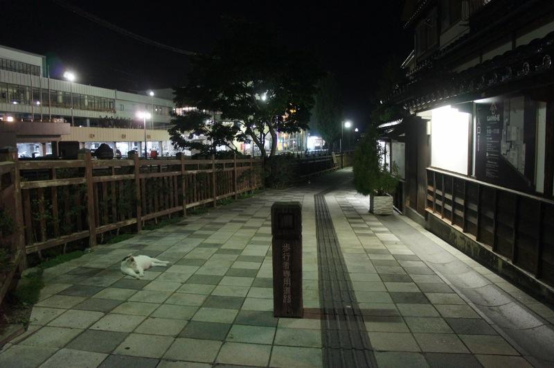 祭りの夜、ネコの夜遊び_d0001843_19471130.jpg