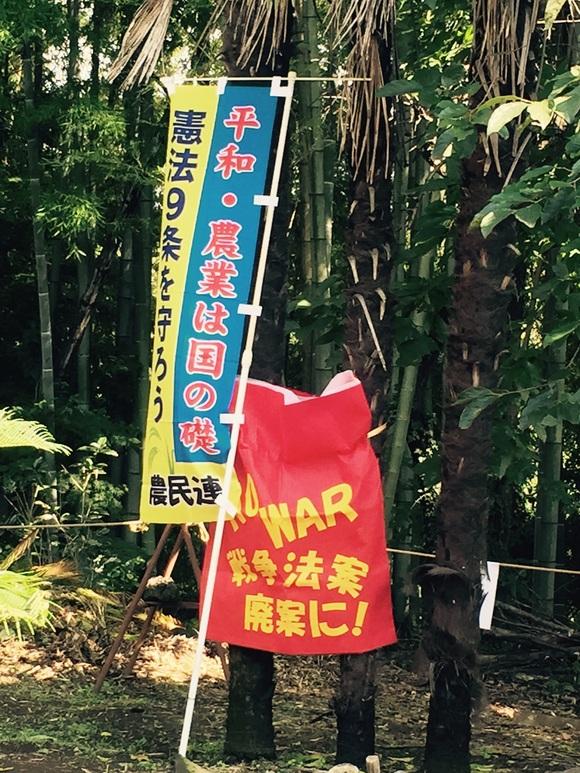 稲刈り交流会2015_e0306753_1431379.jpg