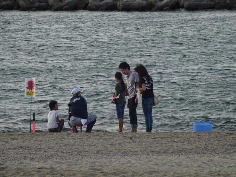 『ウミホタルウオッチイング』・・・せんなん里海公園_c0108460_22354234.jpg