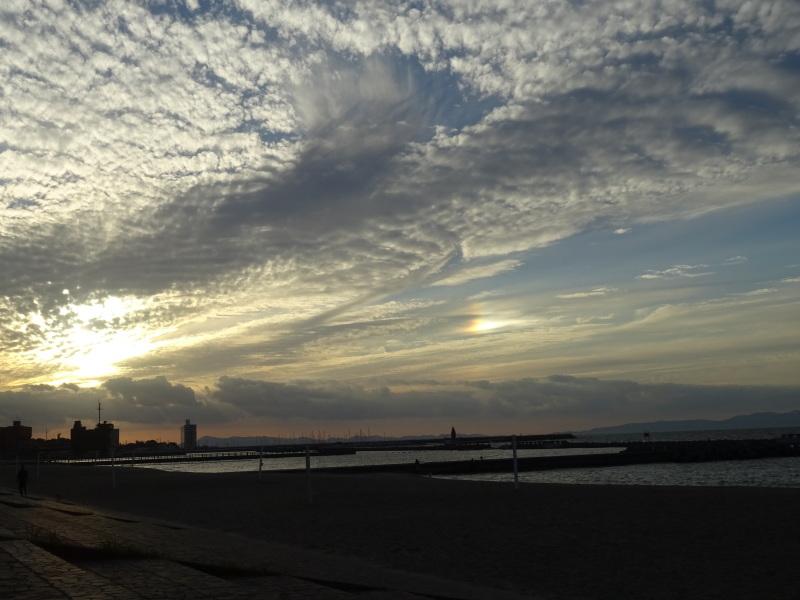 『ウミホタルウオッチイング』・・・せんなん里海公園_c0108460_22404178.jpg