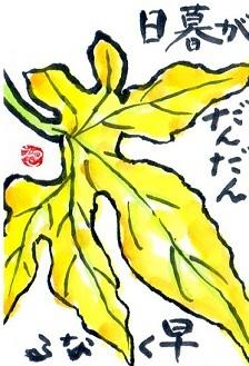敬老の日_a0220570_20113436.jpg