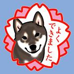 b0057675_10201066.jpg