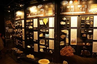 恐竜博物館_b0228113_12050811.jpg