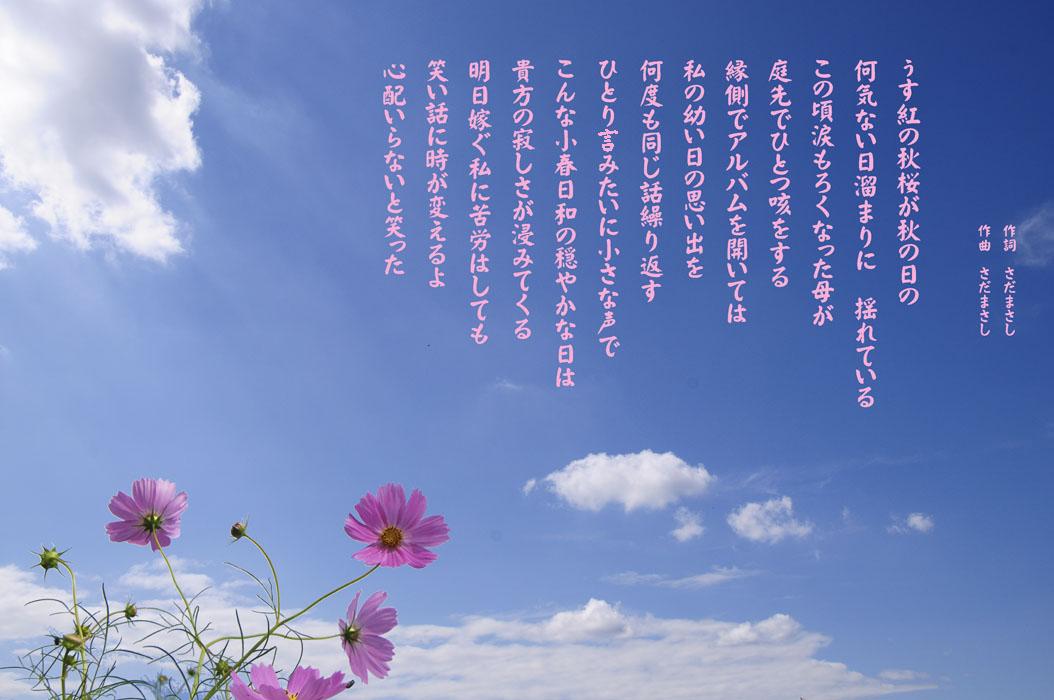 f0206417_85563.jpg
