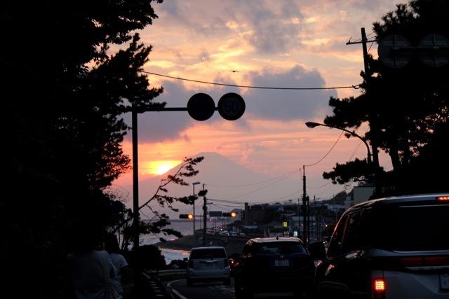 【鎌倉海浜公園 稲村ケ崎地区】part 7_f0348831_14323946.jpg
