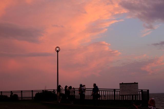 【鎌倉海浜公園 稲村ケ崎地区】part 7_f0348831_14381660.jpg