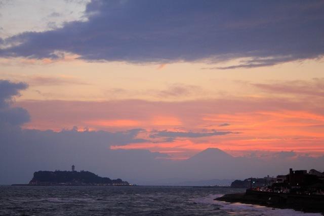 【鎌倉海浜公園 稲村ケ崎地区】part 7_f0348831_14393017.jpg