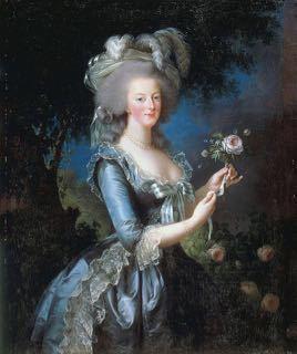 世界ふしぎ発見 「ナポレオンの幸運の女神 バラの女王ジョゼフィーヌ」_e0356356_17193147.jpg