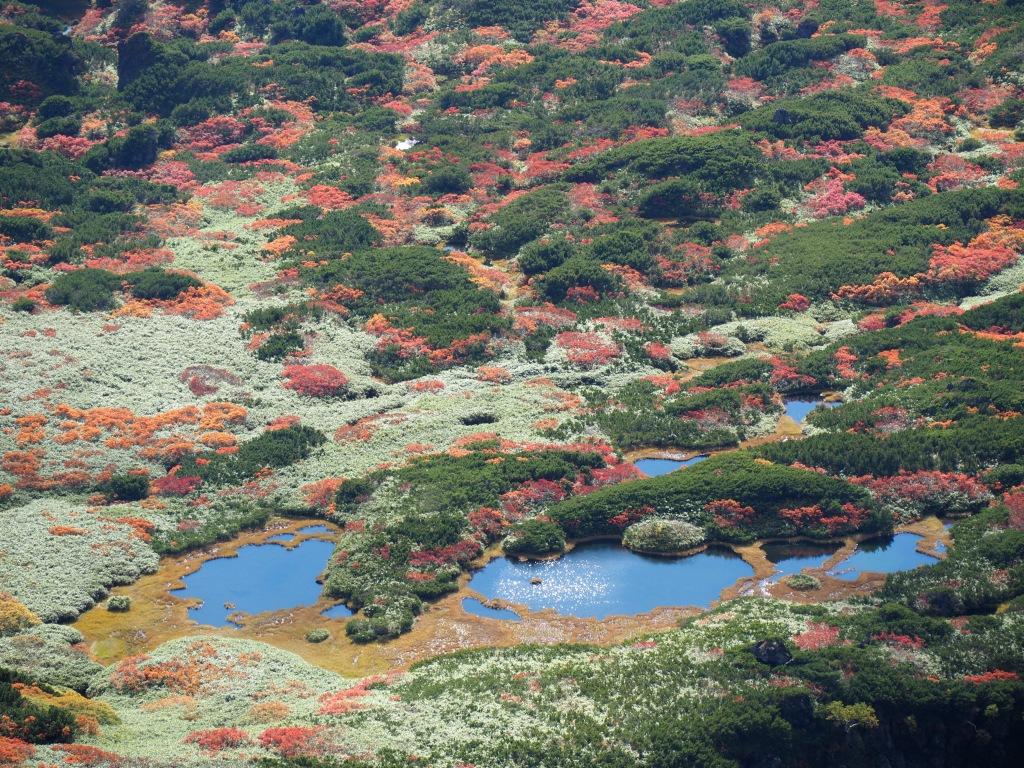 紅葉登山、9月16日-安足間分岐から登山口編-_f0138096_20264824.jpg
