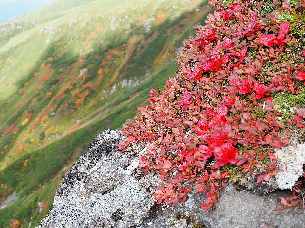 紅葉登山、9月16日-安足間分岐から登山口編-_f0138096_2028162.jpg