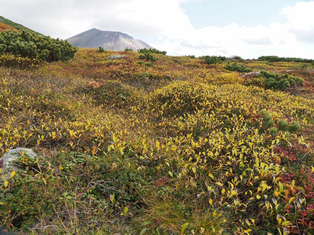 紅葉登山、9月16日-安足間分岐から登山口編-_f0138096_20282849.jpg