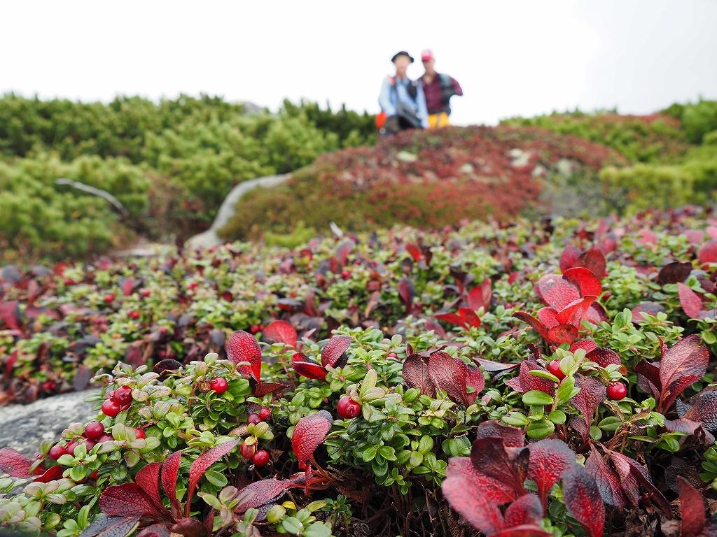 紅葉登山、9月16日-安足間分岐から登山口編-_f0138096_20284649.jpg