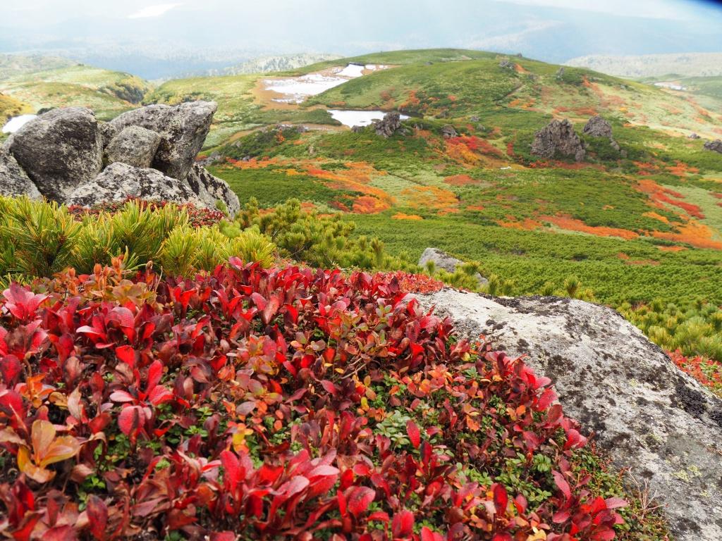 紅葉登山、9月16日-安足間分岐から登山口編-_f0138096_20285513.jpg