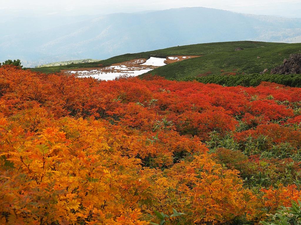 紅葉登山、9月16日-安足間分岐から登山口編-_f0138096_20293117.jpg