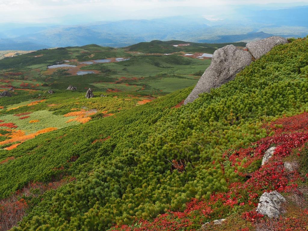 紅葉登山、9月16日-安足間分岐から登山口編-_f0138096_2029328.jpg