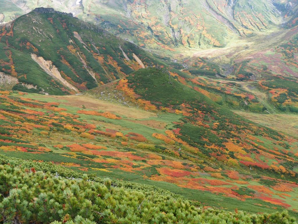紅葉登山、9月16日-安足間分岐から登山口編-_f0138096_23252035.jpg