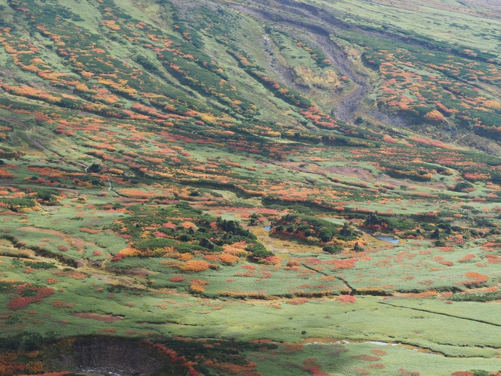 紅葉登山、9月16日-安足間分岐から登山口編-_f0138096_2325432.jpg