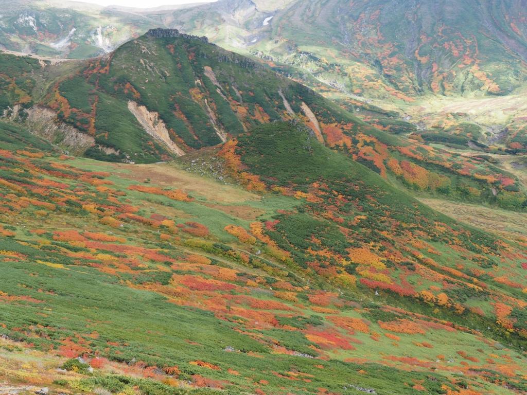 紅葉登山、9月16日-安足間分岐から登山口編-_f0138096_23255560.jpg