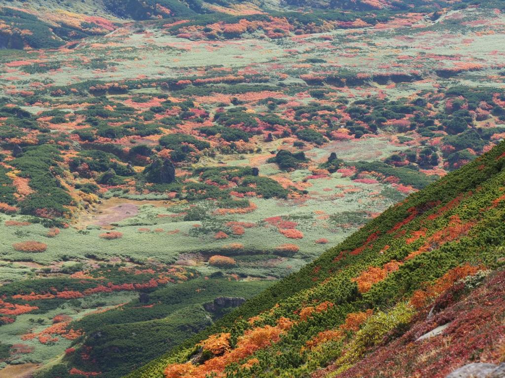 紅葉登山、9月16日-安足間分岐から登山口編-_f0138096_2326557.jpg