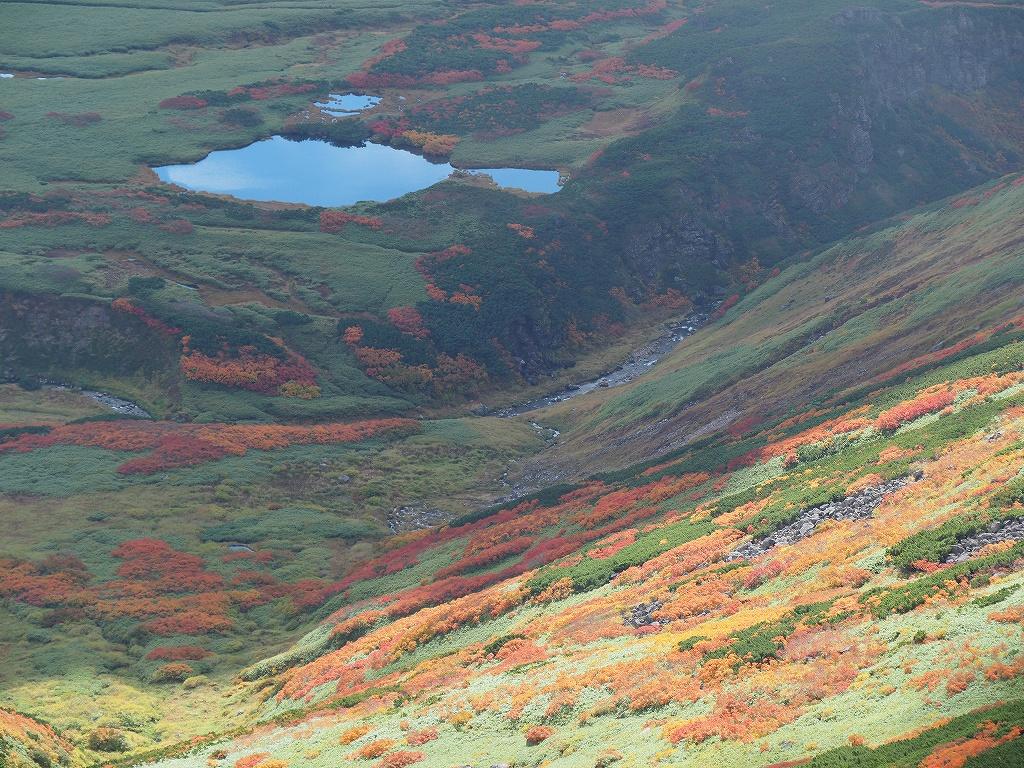 紅葉登山、9月16日-愛別岳から安足間分岐編-_f0138096_9391261.jpg