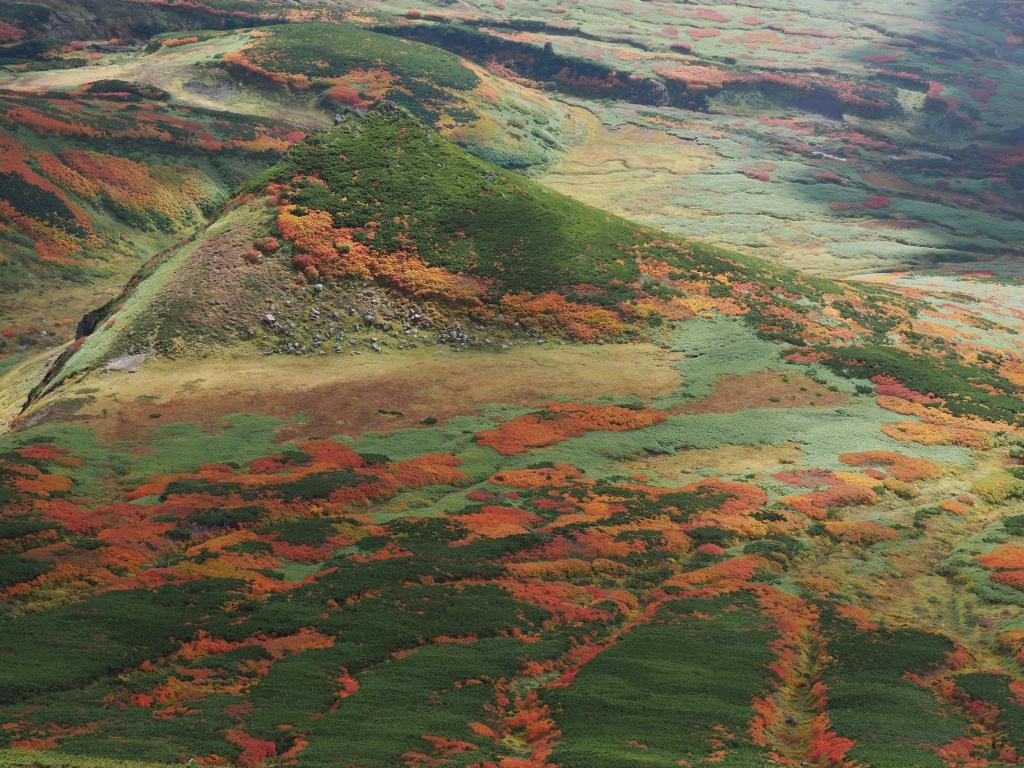 紅葉登山、9月16日-愛別岳から安足間分岐編-_f0138096_9392115.jpg
