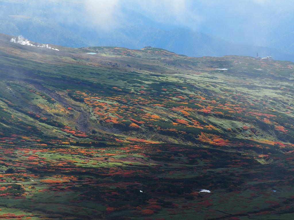 紅葉登山、9月16日-愛別岳から安足間分岐編-_f0138096_9392972.jpg