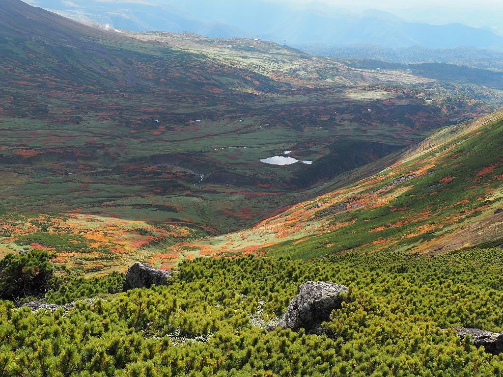 紅葉登山、9月16日-愛別岳から安足間分岐編-_f0138096_9394544.jpg