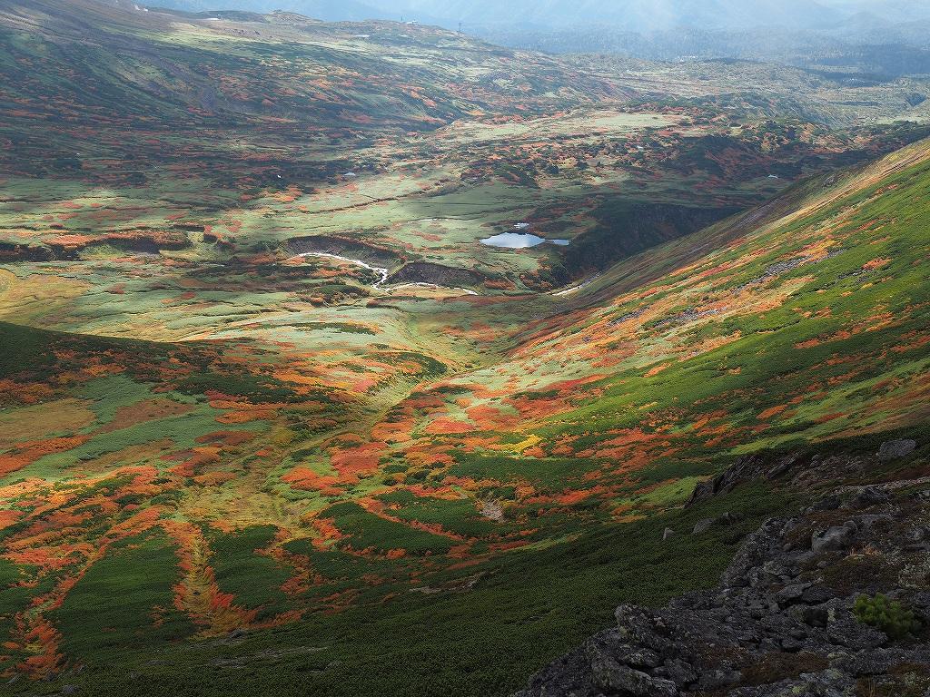 紅葉登山、9月16日-愛別岳から安足間分岐編-_f0138096_939465.jpg