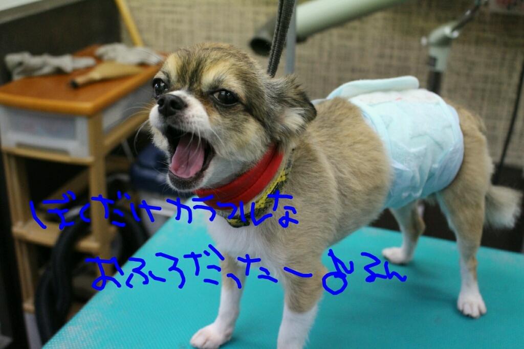 映画_b0130018_01011692.jpg