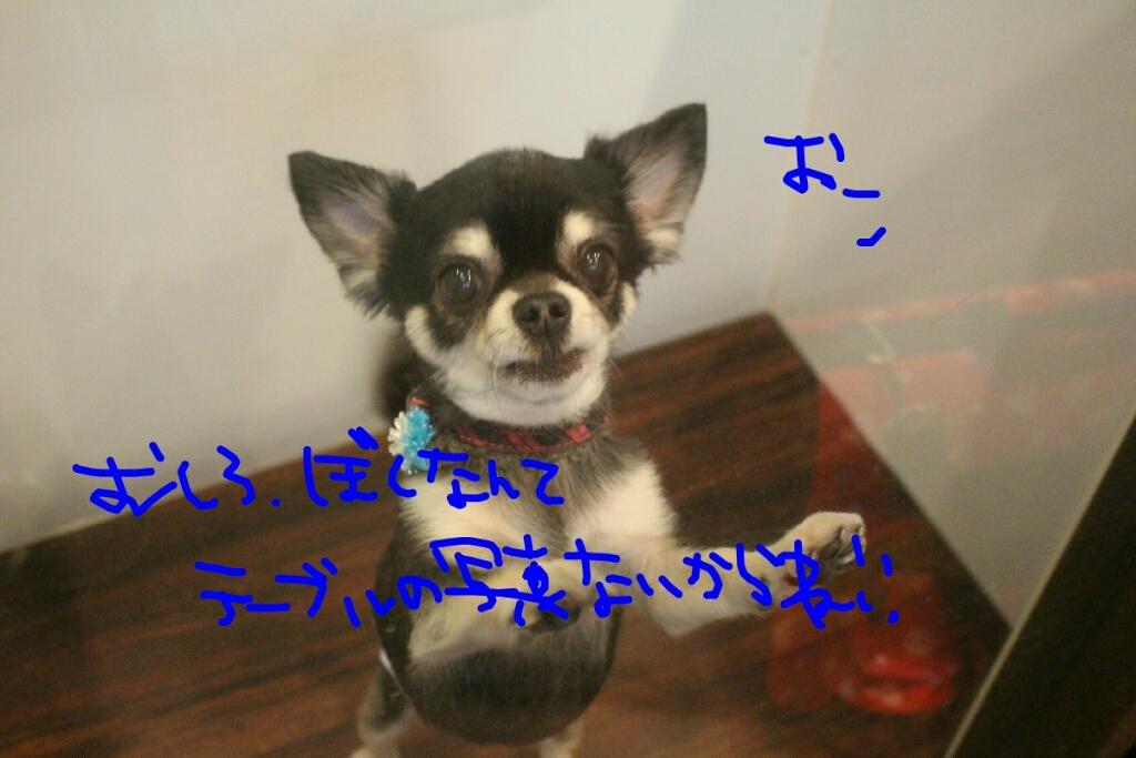 映画_b0130018_01072715.jpg