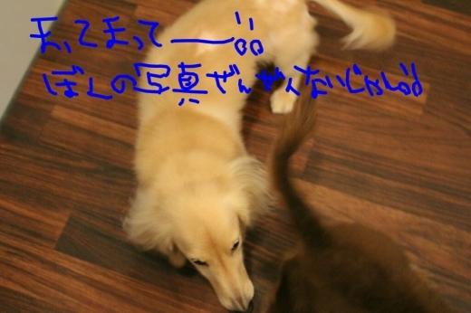 映画_b0130018_01594703.jpg
