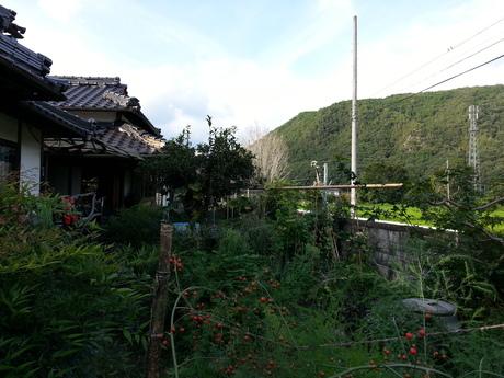 徳島から岡山へ移動して・・・_c0226146_10321376.jpg