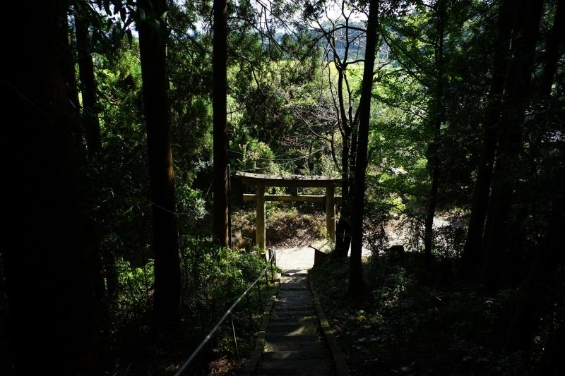 日本遺産 人吉球磨 雨宮神社 トトロの森_c0338787_16173794.jpg